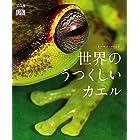 世界の美しいカエル