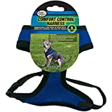 Four Paws Small Blue Comfort Control Dog Harness