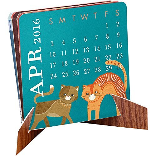 Mini Accordion Desk Calendar by Waste Not Paper (Paper Easel Fold Display Books compare prices)