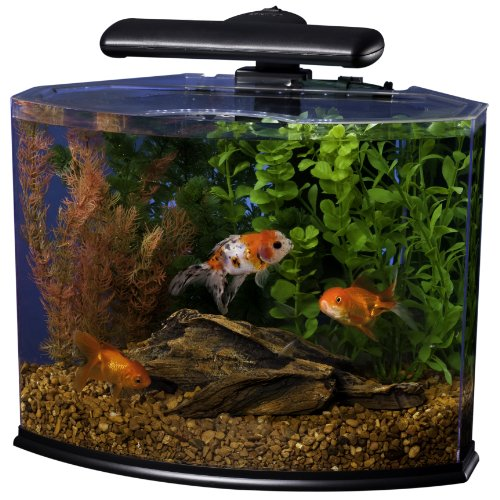 Crescent Aquarium Kit - Black, 5-Gallon