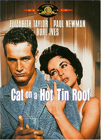 Cover art for  Cat on a Hot Tin Roof