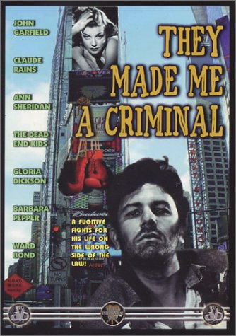 they-made-me-a-criminal