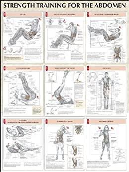 THE TRAINING STRENGTH ANATOMY WORKOUT