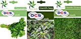 DCS Coriander, Dathu Sag & Doob Grass(Pack of 3 Per Pack 1 Gams)