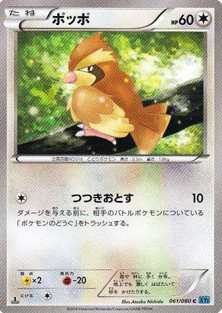 ポケモン 【シングルカード】ポッポ XY2 ワイルドブレイズ コモン