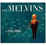 Senile Animal ~ Melvins