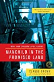 Claude Brown Manchild in the Promised Land