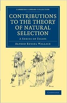 Theory of evolution essay
