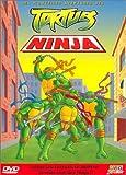 echange, troc Coffret Tortues Ninja 3 DVD : L'Enfer est dans la rue / Maître Splinter et le cyber-tortues / La Vengeance du serpent