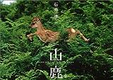 山鹿 (Nature Series)