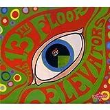 echange, troc The 13th Floor Elevators - The Psychedelic Sounds Of The 13th Floor Elevators