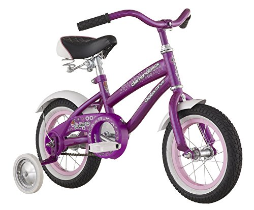 Girl Toddler Bike