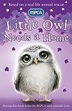 Sue Mongredien Little Owl Needs a Home (RSPCA)