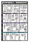 Dumbbell Workout Ii 24″ X 36″ Laminat…