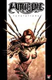 Witchblade Volume 2: Revelations (1582404585) by Wohl, David