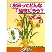 お米なんでも大百科〈3〉お米ってどんな植物だろう?