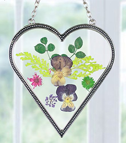 Heart Shaped Suncatcher with Real Pressed Flowers in Glass and Silver Metal - Gift for a Loved One Wife Girlfriend Fiance Valentine's Day Housewarming Gift (Pressed Glasses compare prices)