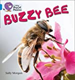 Buzzy Bees: Band 4/Blue (Collins Big Cat Phonics) (0007507852) by Morgan, Sally