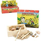 GeoCentral Fossil Excavation Dig Kit
