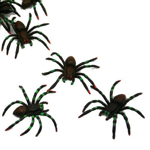 painted-spiders-package-of-12