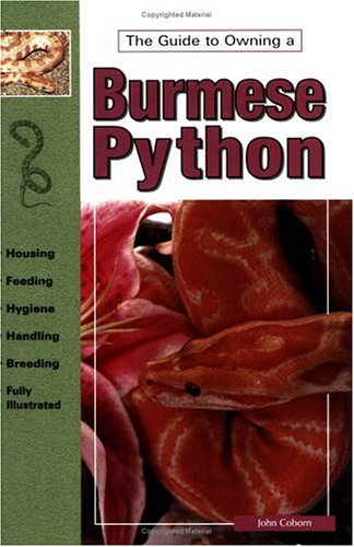 The Guide to Owning Burmese Pythons