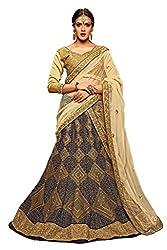 Silvermoon women's Net Embroidered heavy lehenga choli-sm_NMMJA7005B_Nevy blue_free size