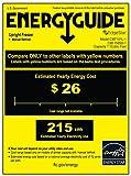 EdgeStar 1.1 Cu. Ft. Stainless Steel Freezer w/ Lock - Stainless Steel