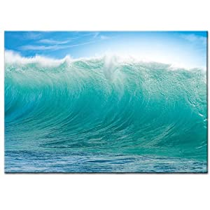 New Ikea Premiar Ocean Waves Hawaii Picture with Frame/canvas Large 55