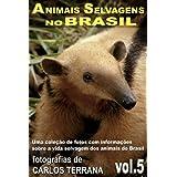 ANIMAIS SELVAGENS NO BRASIL - uma coleção de fotos com informações sobre a vida selvagem dos animais - alguns...