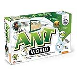 Ant Worldby Interplay UK