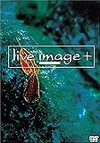 live image+ �� 010531 �� [DVD]