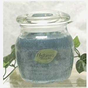 Natures Finest Soy Candles Hydrangea Blossoms 9oz Jars, Set of 2