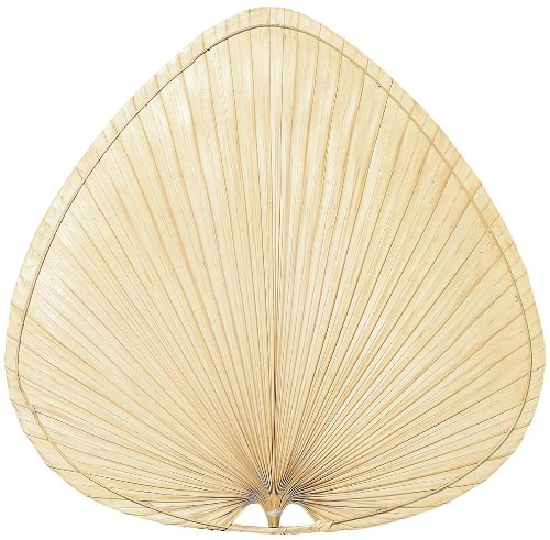 Best Decorative Ceiling Fan Blade Covers: Palm, Bamboo
