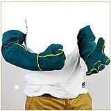 イグアナ 抱っこちゃん 大型 爬虫類 小動物 用 ハンドリング 皮 万能 セーフティー グローブ
