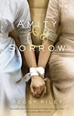 Amity &amp; Sorrow: A Novel