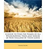 img - for A Guide to Find the Names of All Wildgrowing Trees and Shrubs of New England by Their Leaves (Paperback) - Common book / textbook / text book