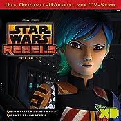 Ein Meister seiner Kunst / Blutsschwestern (Star Wars Rebels 10) | Gabriele Bingenheimer