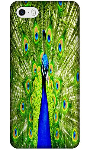 Beautiful Peacock Cell Phone Cases Design Special For iPhone 5/5S No.2