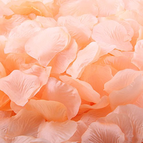 1000-Rose-Petals-Wedding-Decorations