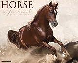 Horse: A Portrait 2014 Wall Calendar