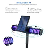 [Improved] BATTOP Solar LED Outdoor Mosquito Killer Lamp Larger Bug Zapper Light Whole Night Protect (Large)