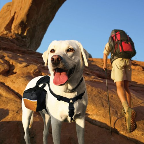 Kurgo 00028 Wander Pack Dog Backpack