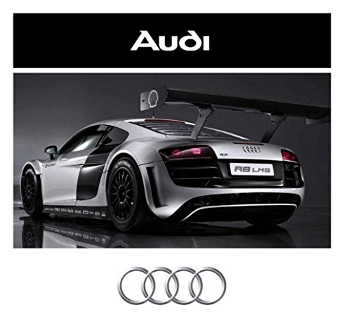 1/24 Scale Silver Audi R8 Model RC Car RTR (Silver) (Audi R8 Model compare prices)