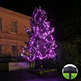 InnooTech Led Christmas Light Solar String Outdoor Garden Fairy Lights Pink 220 Leds with Two Tilted Solar Panels for Patio Xmas Tree Party Patio