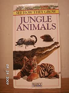 Amazon.com: See How They Grow: Jungle Animals [VHS]: Bob ...
