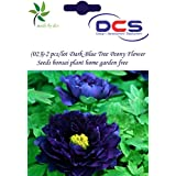 (023) 2pcs/lot Dark Blue Tree Peony Flower Seeds Bonsai Plant Home Garden