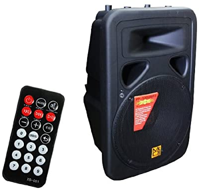 Mr. Dj PP3000MP3 15-Inch 2500-Watt Max Power Speaker with Built-In LCD/MP3/USB/SD Card Slot and Wireless Remote Control from Mr. Dj Inc.