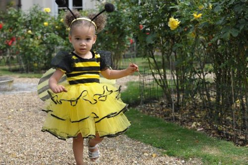 Girls Toddlers Bumble Bee Fancy Dress Costume 2-3 Years