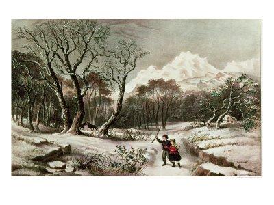 Woodlands in Winter