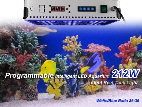 Five inexpensive saltwater aquariums fish tanks for Discount aquarium fish and reef